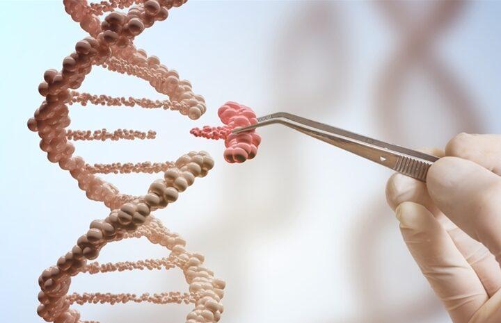 ΣΟΚ! Ο ΠΟΥ προτείνει την επεξεργασία του ανθρώπινου γονιδιώματος για την πρόοδο της δημόσιας υγείας!